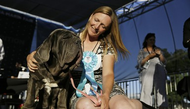 Shirley Zindler, of Sebastopol, Calif., sits with her dog Martha, a Neapolitan mastiff, who won the World's Ugliest Dog Contest at the Sonoma-Marin Fair